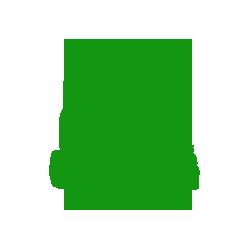 Reparatii electromotoare si alternatoare
