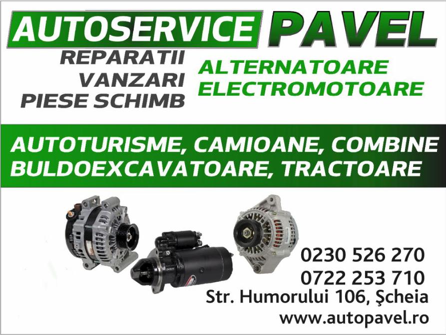 AUTOPAVEL - reparatii electromotoare si alternatoare Service Auto Suceava